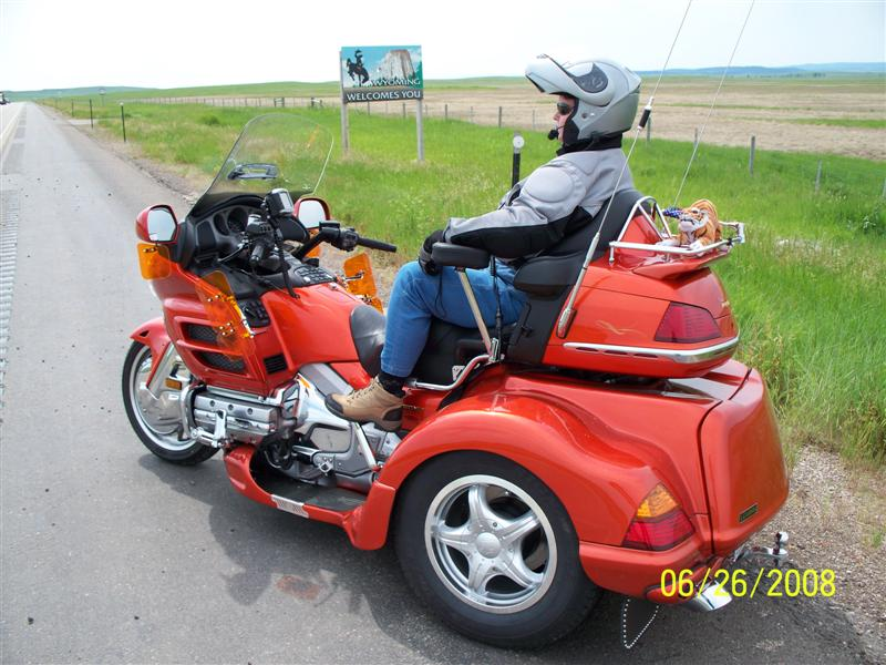 GOLDWING!